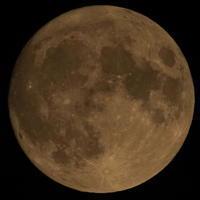 13日の金曜日の仏滅の満月 - COMPLEX CAT