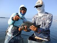 台風休み明けの浜名湖です。もう秋モードと成りました! - Fly Fishing Total Support.TEAL