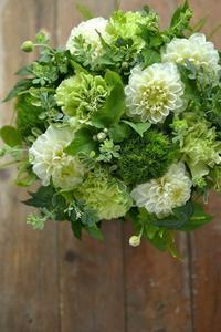 お店OPNEのお祝いに贈るフラワーアレンジメント。green×white - 花色~あなたの好きなお花屋さんになりたい~