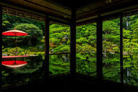 旧竹林院・夏 - 花景色-K.W.C. PhotoBlog