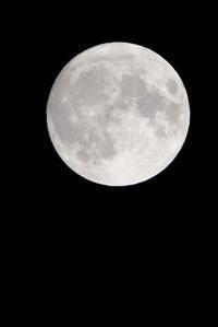 昨夜の 中秋の名月 - 平凡な日々の中で
