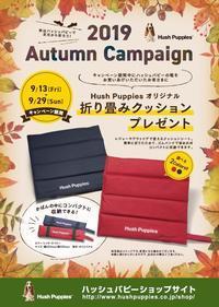 ハッシュパピーオータムキャンペーン開催中 - 靴のヨリズミ 店長のブログ    Kutsulog Blog