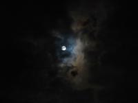 世直しの大十五夜の月見かな一茶 - 丙丙凡凡(蛙声diary)