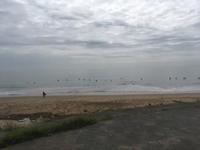 湾内 スネヒザ - 海ぼうずのエコエゴ日記