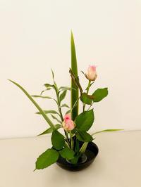 カルチャースクール講師デビュー! - 自然を見つめて自分と向き合う心の花