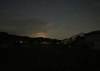 月白から満月まで - マリカの野草画帖