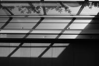 窓際 / X-T3+ XF35mmF1.4 R - minamiazabu de 散歩