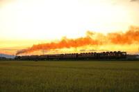 夕焼けタイム - 蒸気屋が贈る日々の写真-exciteVer
