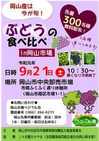 2019年ぶどうの食べ比べIN岡山市場 - 岡マルカちゃんのベジフル日記