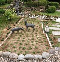 中庭でのお仕事 - 金沢犀川温泉 川端の湯宿「滝亭」BLOG