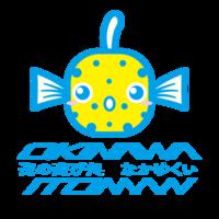 お披露目 - 沖縄本島最南端・糸満の水中世界をご案内!「海の遊び処 なかゆくい」