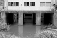 水の行方 - 節操のない写真館