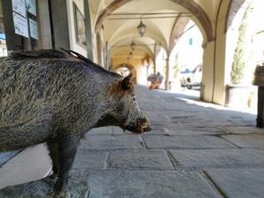 キャンティ地方の可愛い村、グレーヴェインキャンティ - フィレンツェ田舎生活便り2