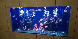 Hotel MONday 豊洲 - 茨城のラーメンブログ  麺'zクラブ