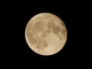 満月の昨日は見えなかった月が今日はよく見えます - 5号館を出て
