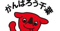 NTC CUP rd5、終了!(仮ブログ) - 新東京フォトブログ