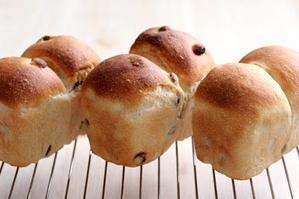 3種のレーズン食べ比べ!と、シリコンミニミニ食パン型 - Takacoco Kitchen