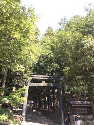 諏訪へ?小さな冒険2(前編) - フレンチライフ・パリ郊外→千葉郊外日記