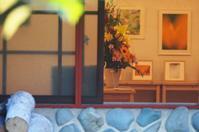 9月15日今日の写真 - ainosatoブログ02