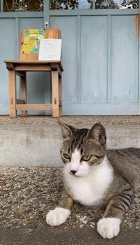 中山うりライヴ - 好きが・いっぱい貼り絵「ペーパーコラージュ作家」*浮嵯「うさ」のブログ