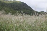 9月登山・烏ケ山(からすがせん)① - 猪こっと猛進