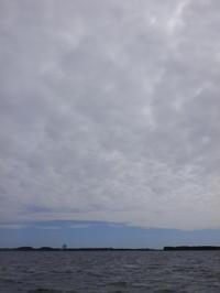 サンスイ・加瀬班の浜名湖合宿終了! - Fly Fishing Total Support.TEAL