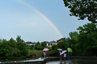 雨上がり - shotaの四季彩々