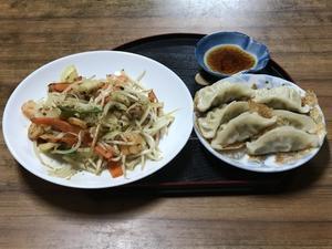 野菜炒め&餃子 - 老老介護で奮闘中