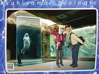 10年以上ブリの旭山動物園 - へっぽこあるぴにすと☆