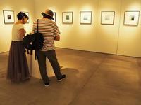 写真展 - 相模原・町田エリアの写真サークル「なちゅフォト」ブログ!