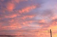 ぴんく色の空。。。 - □ □ nuku-nuku □ □