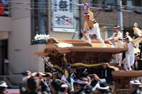 岸和田だんじり祭…③ - Taro's Photo
