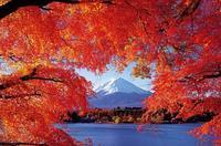 """""""Mt.富士巻-2019"""" 本番に向け、気温が下がってきたのは、良い事だ。 - レミオロメン・藤巻亮太に """"春よ来い"""""""