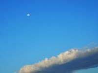 朝の月と、なっちゃっての…(´艸`*) - のーんびり hachisu 日記