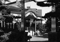 お隣大照寺の裏門とスプリングカメラ - 照片画廊