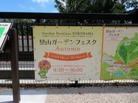 散歩2019.9.17里山ガーデンフェスタ - Gonta2019's Blog