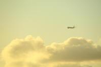 2019 GW 家族でシドニー旅行 その7 部屋からの飛行機撮影 - 南の島の飛行機日記