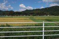 新米の買い出しに - 皿倉山の見える家