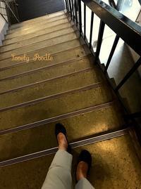 階段を降りて行く♪ - Lovely Poodle