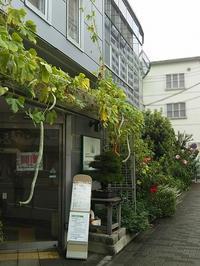 多肉ちゃんワークショップ - サモエド クローカのお気楽日記