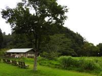 雨の一日 - 千葉県いすみ環境と文化のさとセンター