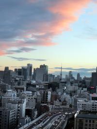 【ロイヤルパークホテル】エグゼクティブラウンジのカクテルタイム【日本橋】 - お散歩アルバム・・穏やかな晩秋