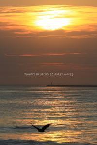 朝の色(Early autumn sea・Ⅲ) - FUNKY'S BLUE SKY