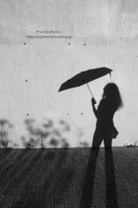 日傘。。。 - It's only photo 2