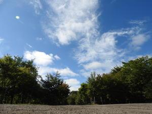 今週末の天気と気温(2019年9月19日):東京の11月中ごろの気温です - 北軽井沢スウィートグラス