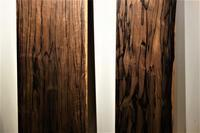 縞黒檀シマコクタン - SOLiD「無垢材セレクトカタログ」/ 材木店・製材所 新発田屋(シバタヤ)