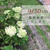 臨時休業のお知らせ - さにべるスタッフblog     -Sunny Day's Garden-