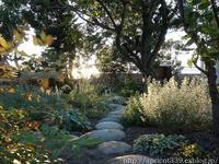 秋の庭しごとスタート!苗の植えつけの下準備 - シンプルで心地いい暮らし