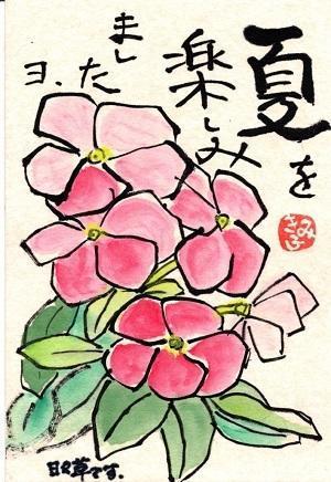 「北海道は!」 - 絵手紙遊印彫師・夢追い人