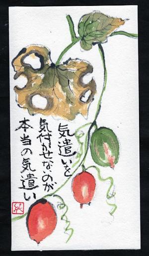 エメラルド色から珊瑚色になる頃には・・・ - 絵手紙グッドタイミング